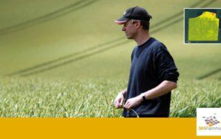 Entscheidungshilfen im Getreidebau