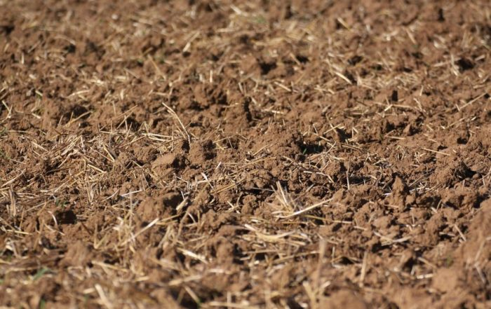 Stubble cultivation – incorporated harvest residues