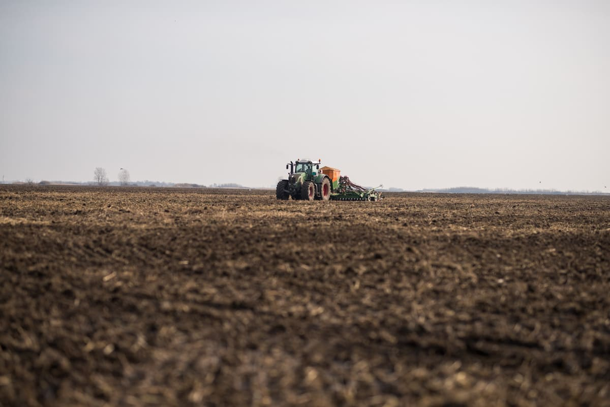 Tractor during the sowing