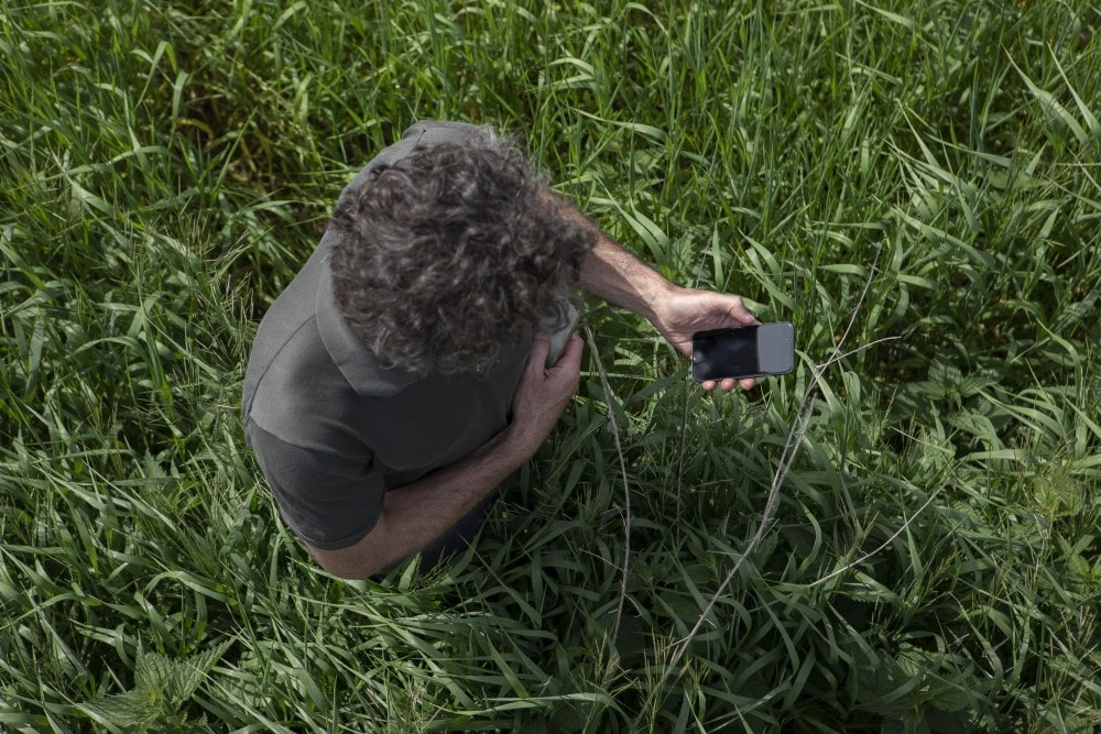 Farmer using mobile phone in a crop field.