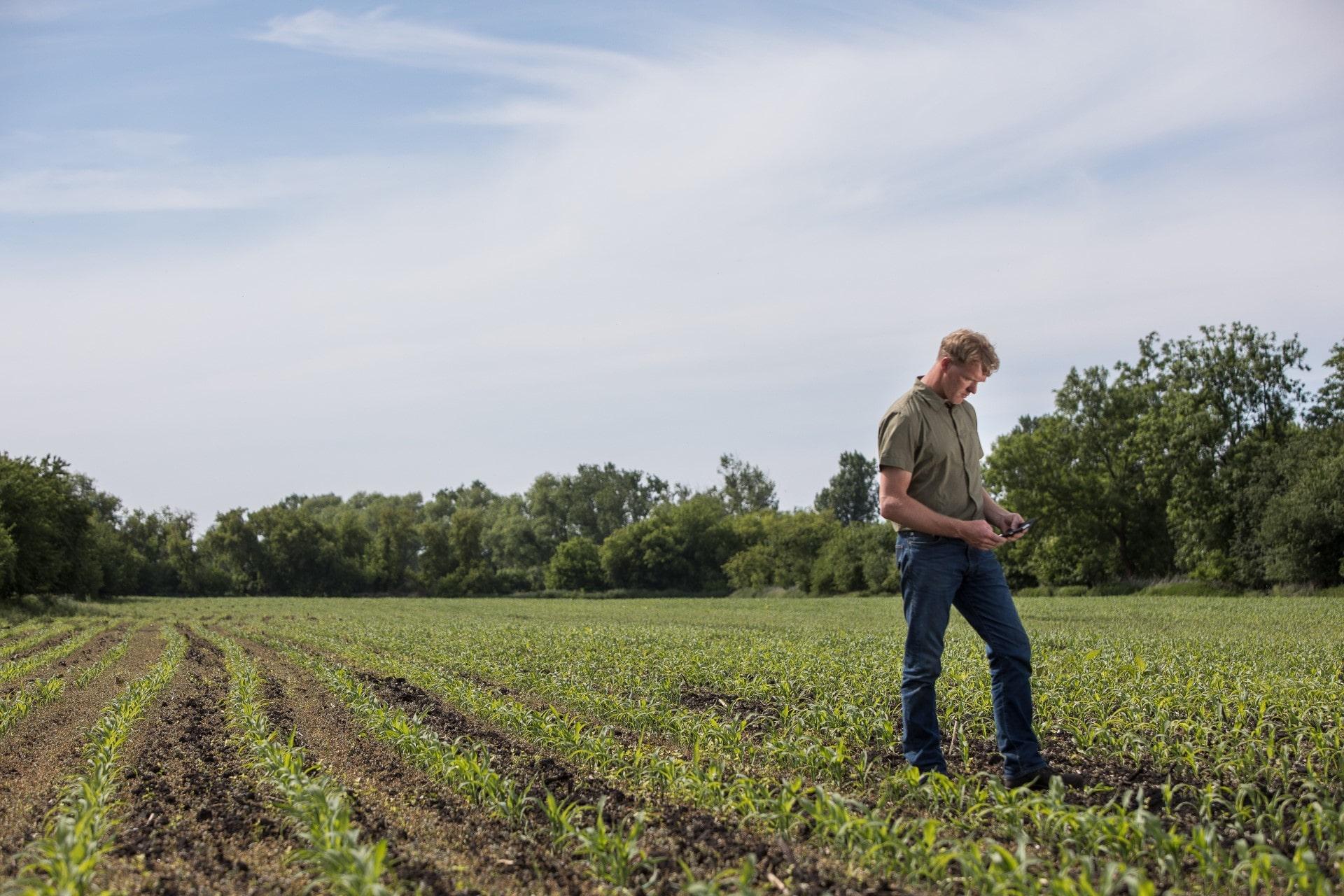 Landwirt mit Handy im Feld.