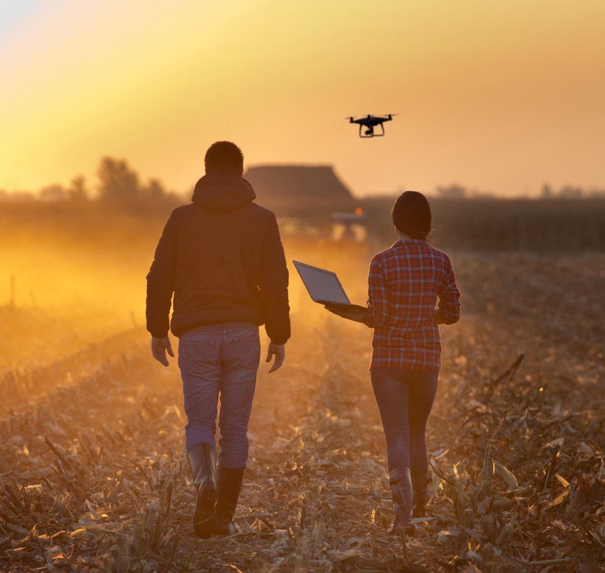 Numérisation de l'agriculture