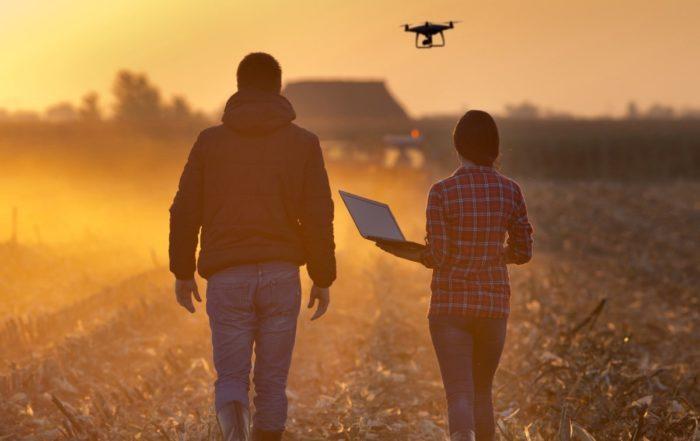 Drogi do cyfryzacji w rolnictwie